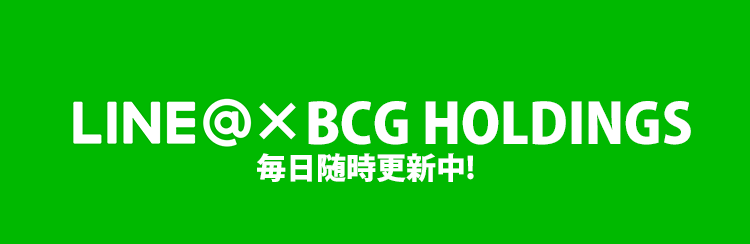 BCG HOLDINGS